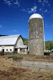 Day on the Farm