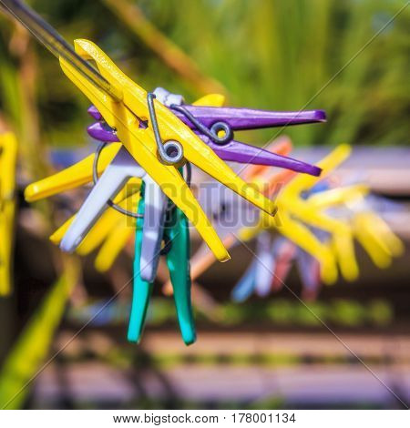 colored clothespins outdoor. Soft selective focus and shallow depth of field