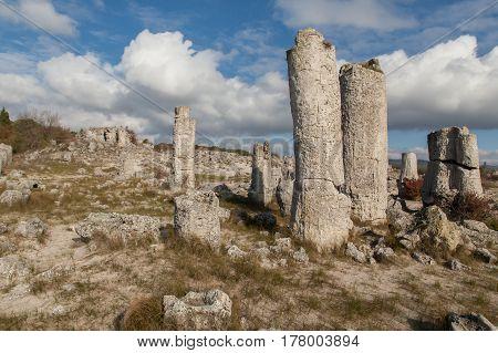 Stone Forest near Varna Bulgaria Pobiti kamani rock phenomenon