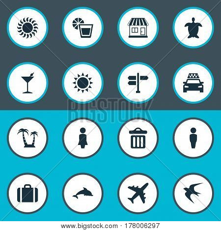 Vector Illustration Set Of Simple Seaside Icons. Elements Tortoise, Airplane, Sunlight And Other Synonyms Trip, Island And Trash.