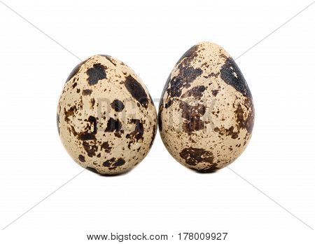 Two spotted quail eggs isolated on white background
