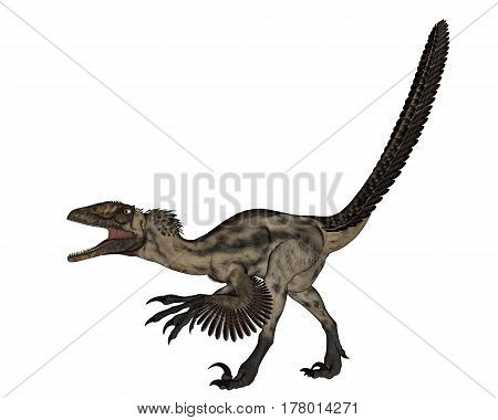 Deinocheirus dinosaur walking and roaring isolated in white background - 3D render