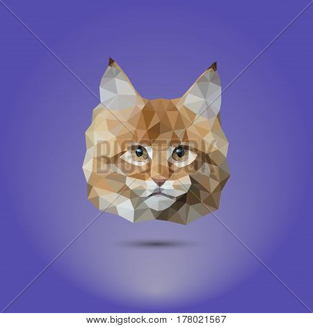 Low-poly cat. The head of a mane coone. Suitable for printing on clothing and t-shirts