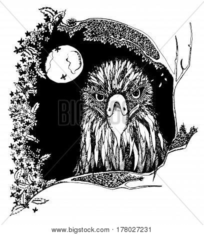 Eagle. Bird with ethnic floral doodle pattern. Coloring book page, zentangle art, design for spiritual relaxation and meditation for adults. Black and white vector illustration. Zen doodles