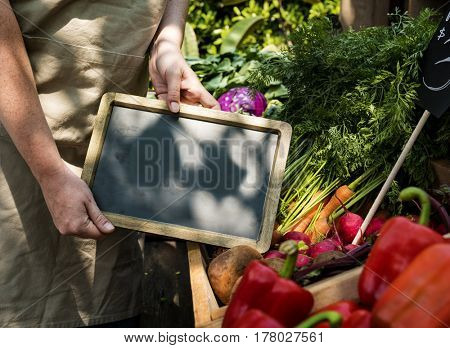 Farmers market fresh products for selling