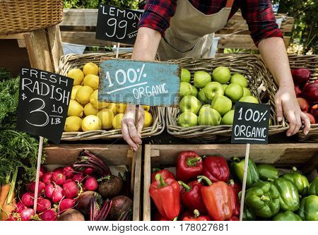 Greengrocer preparing organic fresh agricultural product at farmer market