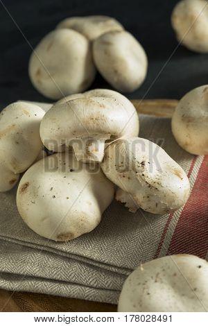 Raw Organic White Stuffing Mushrooms