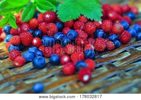 Closeup of berries of bilberry and wild strawberry with leaves. summer background