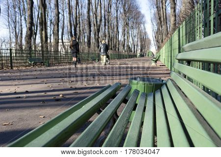 spring Sunny day a bench people walk in the Park trees city Sankt-Petersburg Russia landscape