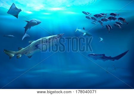 Ocean underwater with marine animals. 3D illustration