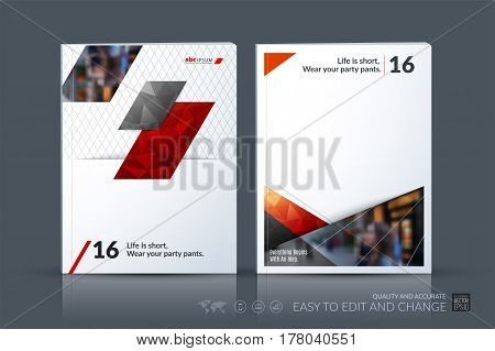 Business vector template. Brochure layout, cover modern design annual report, magazine, flyer in A4 with red diagonal, rectangular shapes for business with abstract texture background.