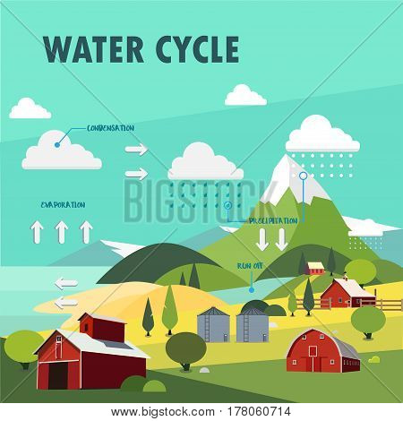 Water cycle information graphic illustration vector design