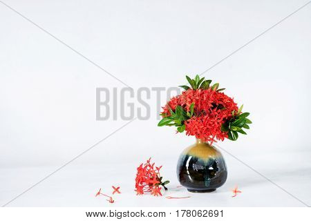 Red ixora flower in blue ceramic vase on wood table
