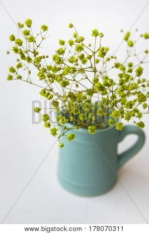 Small yellow green flowers in blue pitcher or jug on white background top view pastel colors minimalist clean style for blogging social media hero image