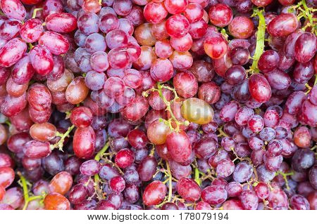 Fresh grapes fruit close up nutrition fresh fruit background