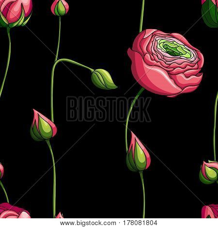 Elegance Seamless color peony pattern on black background, vector illustration