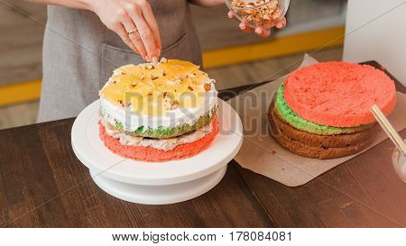 Masterclass of preparing color biscuit cake with white cream and oranges on wood kitchen table. Culinary blogger making creative birthday cake. Cuisine, good housewife, colorful festive food concept