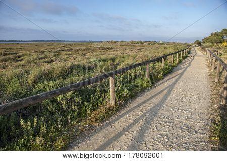 Piedras river marshlands footpath close to El Rompido Huelva Spain