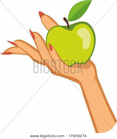 woman's hand holding apple .vector illustration