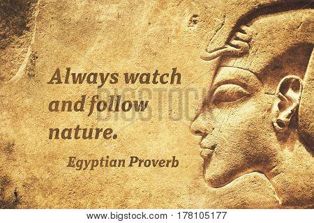 Follow Nature Ep