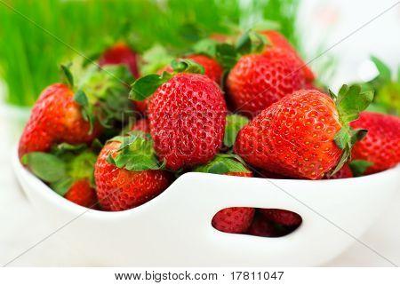 frische Erdbeeren auf weißem Hintergrund
