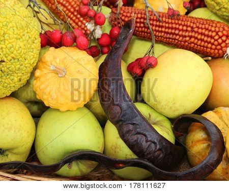 Carob Cobs Apples And Other Seasonal Fruits