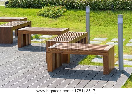 Wood Bench In Garden With Small Green Tree In Background