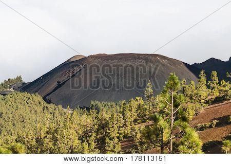 Volcan De Arafo In Tenerife, Spain