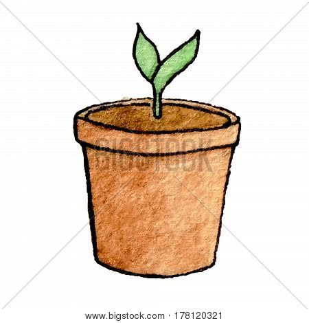 Hand drawn watercolor brown pot with the sprout isolated on the white background