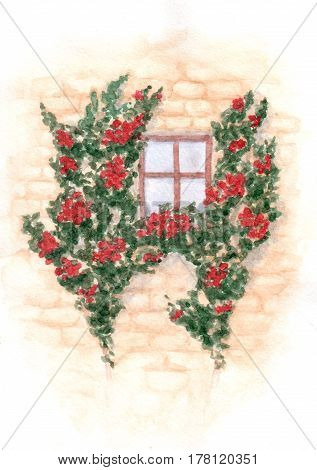Hand drawn watercolor window and wall with climbing red roses