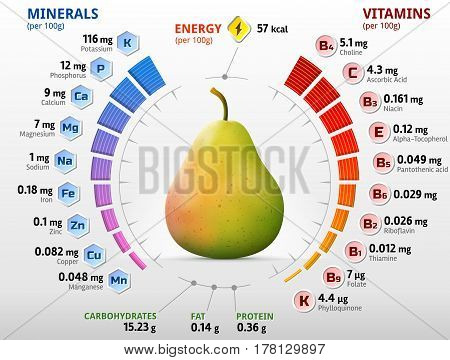 Vitamins and minerals of pear fruit. Infographics about nutrients in raw pear. Qualitative vector illustration for fruits vitamins agriculture health food nutrients diet etc