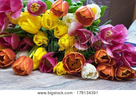 bouquet of many pink tulips yellow red and white