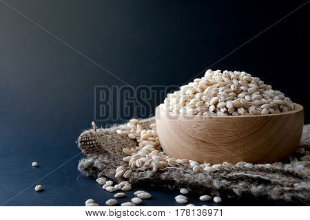 pearls barley grain seed on background .