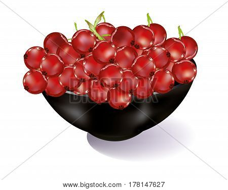Black bowl with red currents on white background