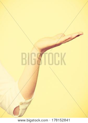 Woman showing presenting female holding empty hand palm copy space for product. Advertisement concept. Studio shot on white background