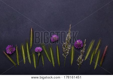 Beautiful Spring Flowers And Spikelet Grass, Floral Seasonal Blossom