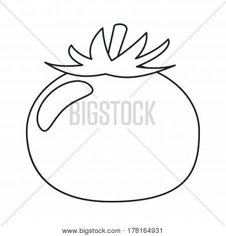 tomato vegetable healthy food outline vector illustration eps 10