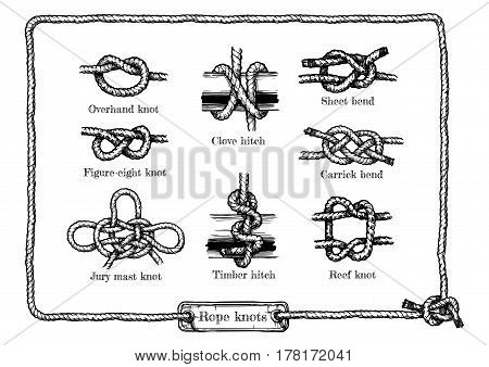 Vector hand drawn illustration set of different rope knots. Figure-eight jury mast (masthead) reef (square) overhand knot clove and timber hitchs sheet and carrick bends.