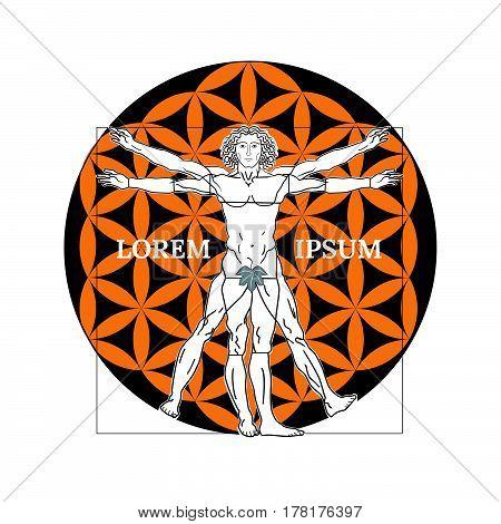 Vitruvian man on a white background. Vector illustration.