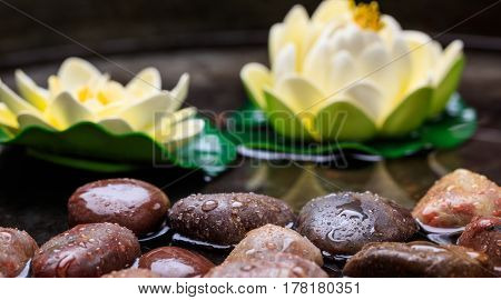 Water Lilies And Pebbles In Water Background