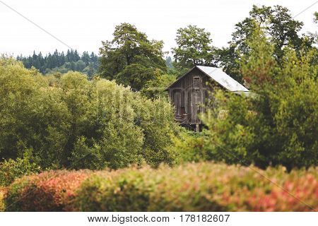Wooden farm building in a lush forest setting in Lake Oswego Oregon USA.