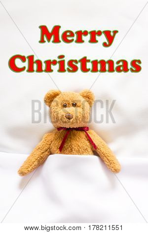 teddy bear with callout symbol and message