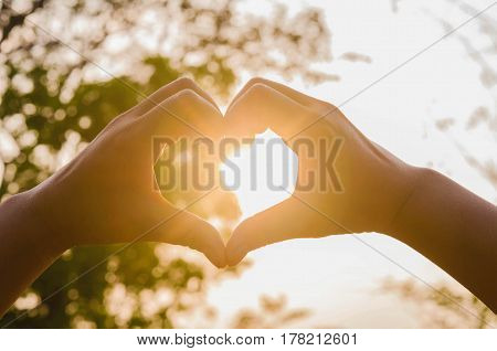 hands in shape of love heart and sunshine in nature