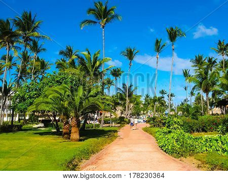 Punta Cana, Dominican republic - February 02, 2013: The VIK Arena Blanca hotel under palms near the beach