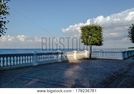 Small lonely green tree on the balcony with a stone balustrade in the background of a calm sea and blue sky