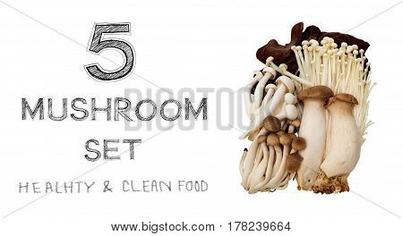5 Mushrooms raw food in 1 set on white background isolate and made a clipping paths.
