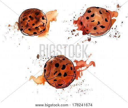 Vector and watercolour drawings of chocolate chips cookies with splashes of paint around, hand drawn on a white background, with a place for text
