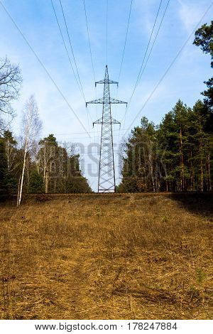 The High-voltage Pole In The Forest. Line Current Transfer