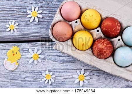 Easter felt decorations. Dyed eggs on wood. Easter festive composition.