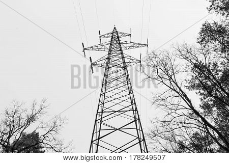 Black And White. High Pole Mains. Electricity. High Voltage Network.